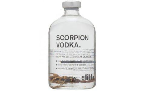 Vodka Kalajengking